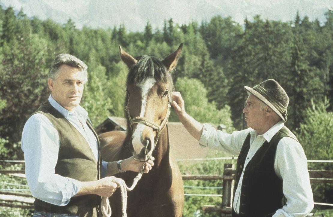 Graf Markus von Brauneck (Klaus Wildbolz, l.); Dr. Pankraz Obermayr (Walther Reyer, r.) - Bildquelle: Beta Film GmbH
