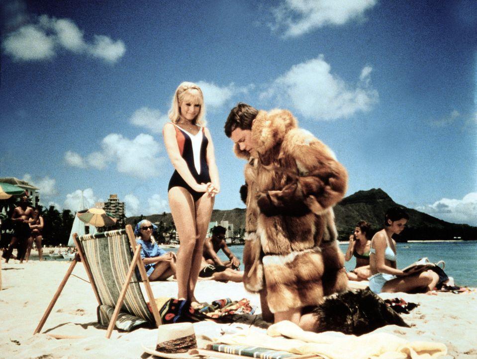 Jeannie (Barbara Eden, l.) bestraft Tony (Larry Hagman, r.) dafür, dass er ihr vorgemacht hat, zum Nordpol zu reisen, indem er den angezauberten Win... - Bildquelle: Columbia Pictures