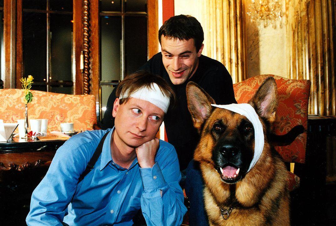 Bei den Ermittlungen im Mordfall Kempinski zeigen Böck (Heinz Weixelbraun, l.) und Rex ganzen Einsatz und geraten in eine gefährliche Situation. Kom... - Bildquelle: Ali Schafler Sat.1