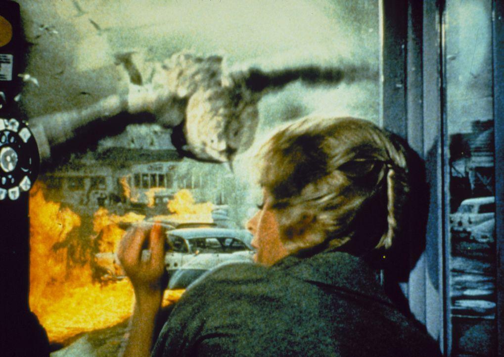 Eine scheinbar gewöhnliche Seemöve hat es auf Melanie Daniels (Tippi Hedren) abgesehen ... - Bildquelle: 2000 Universal Studios