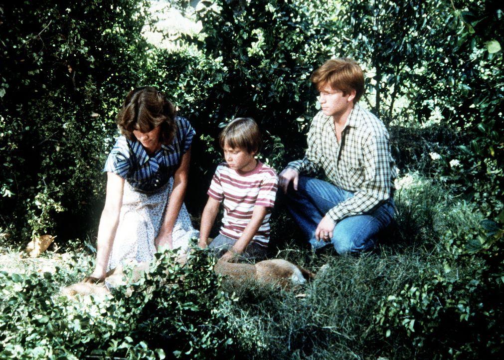 Mary Ellen (Judy Norton-Taylor, l.), der kleine Jeffrey (Keith Mitchell, M.) und ihr Bruder Ben (Eric Scott, r.) finden Reckless, den alten Hund der... - Bildquelle: WARNER BROS. INTERNATIONAL TELEVISION
